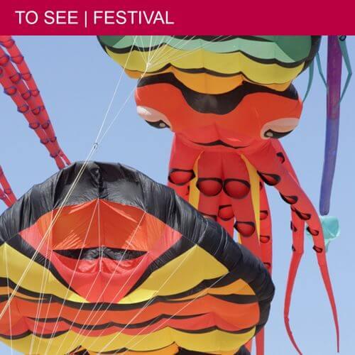 Gigantic kites at the Festival du Vent in Portiragnes