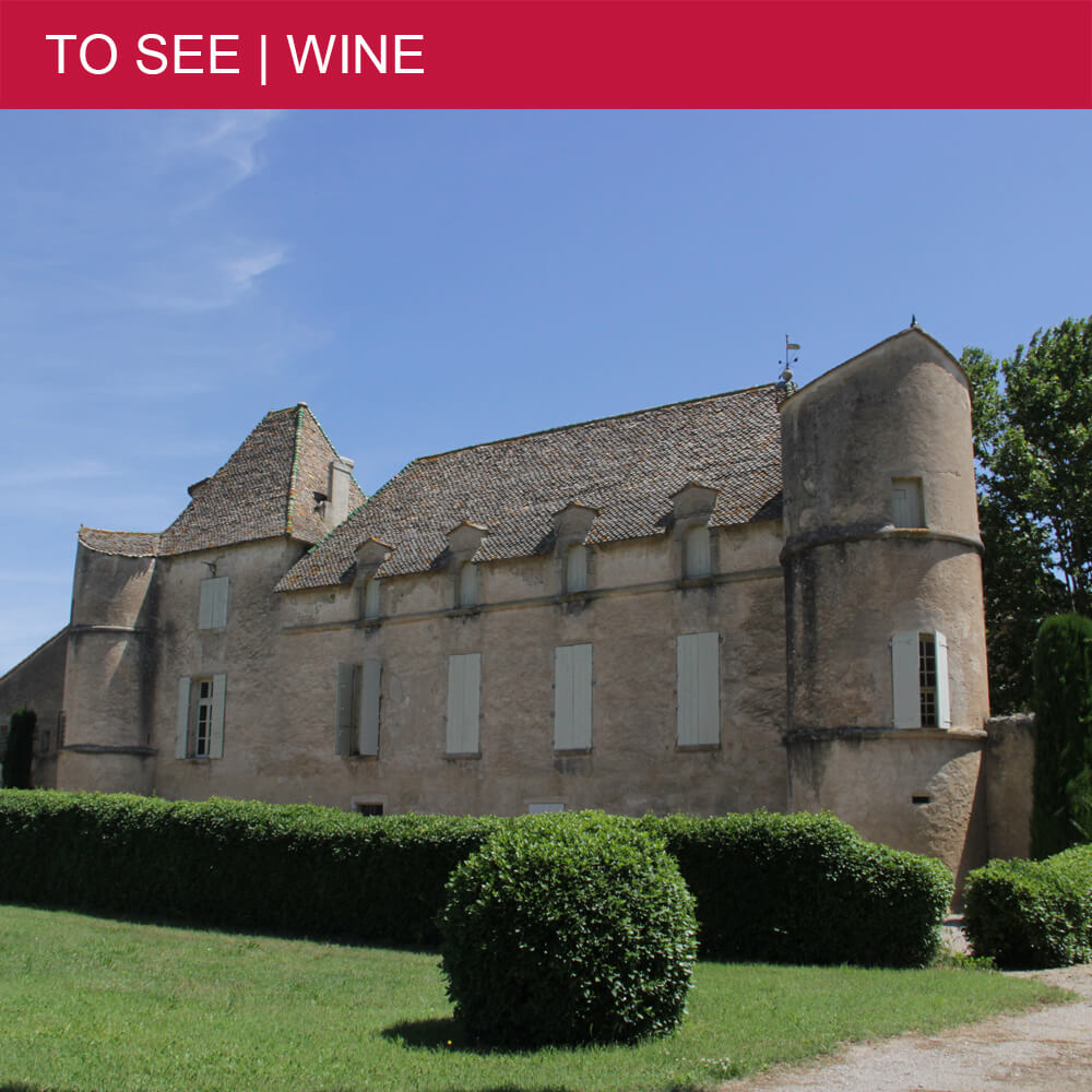 Wine and more at Château de Perdiguier in Maraussan