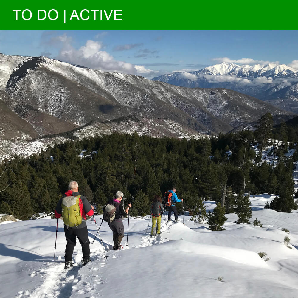 Amazing snowshoe hike through the real wildlife of the Pyrenees