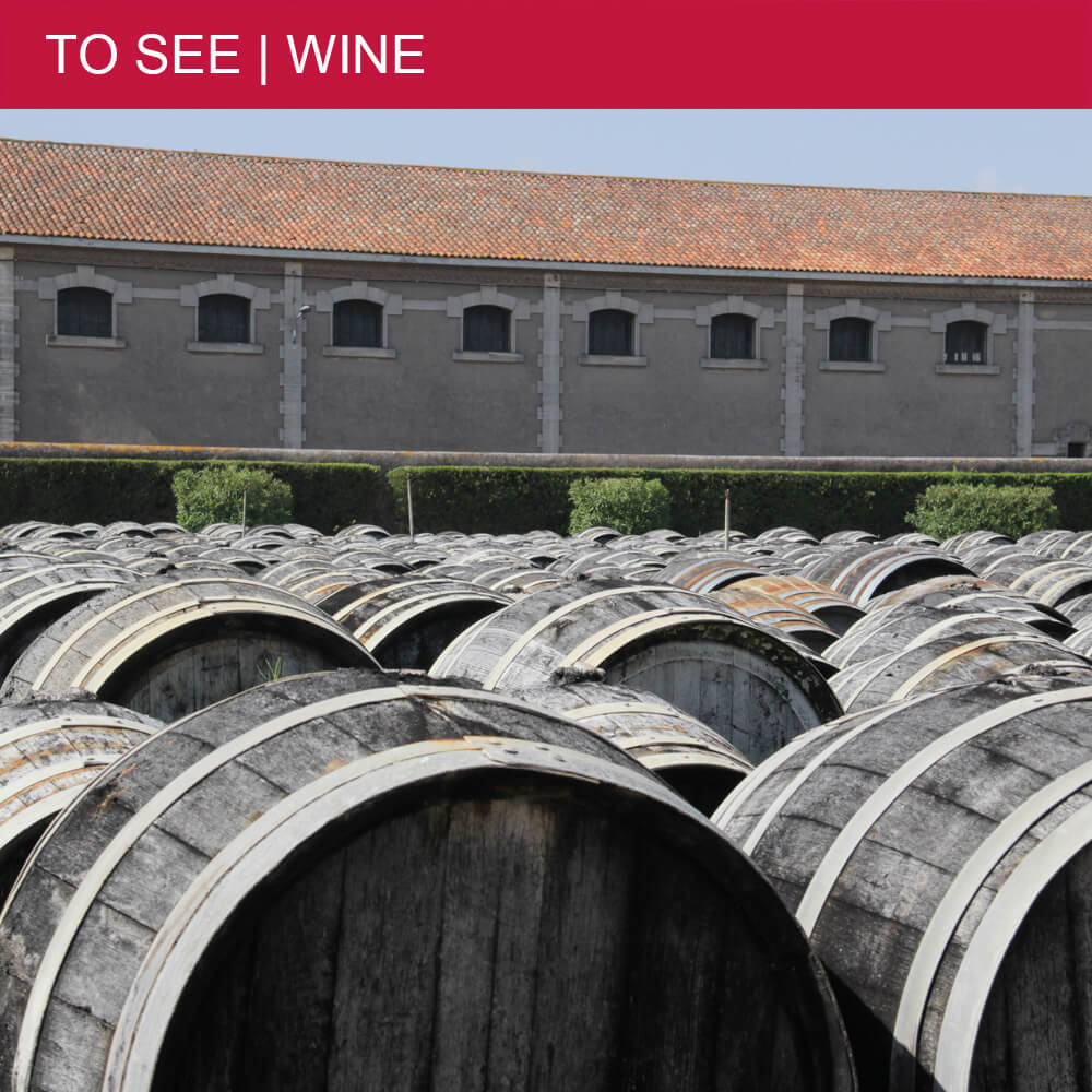 Visiting Noilly Prat: France's first vermouth manufacturer