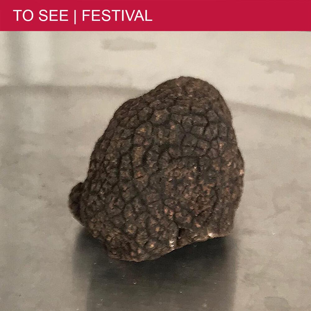 The Fête de la Truffe in Béziers- a festival dedicated to truffles