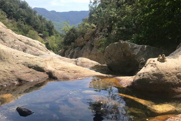 Parc Naturel Régional du Haut-Languedoc