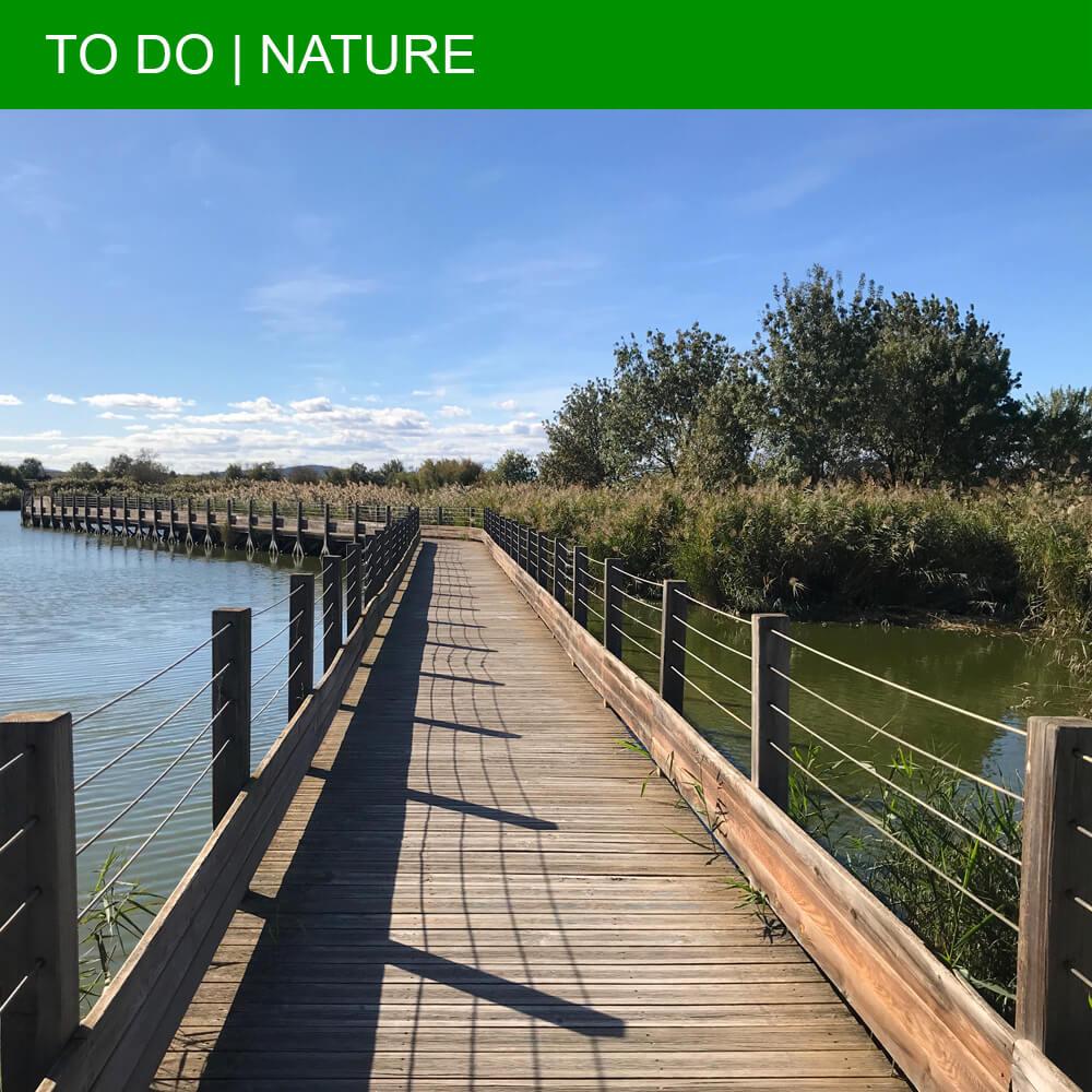 Pleasant walks at the Maison de la Nature in Lattes
